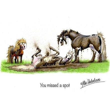Alex Underdown Greeting Card  'You Missed A Spot'