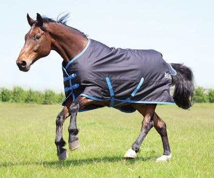 Bridleway Ontario Turnout 220g Standard Neck Black & Royal Blue