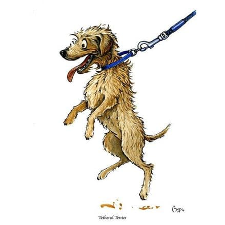 Bryn Parry Blank Greeting Card 'Tethered Terrier'