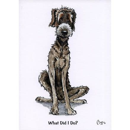 Bryn Parry Blank Greeting Card 'What Did I Do?'