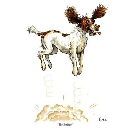 Bryn Parry Greeting Card 'The Springer'
