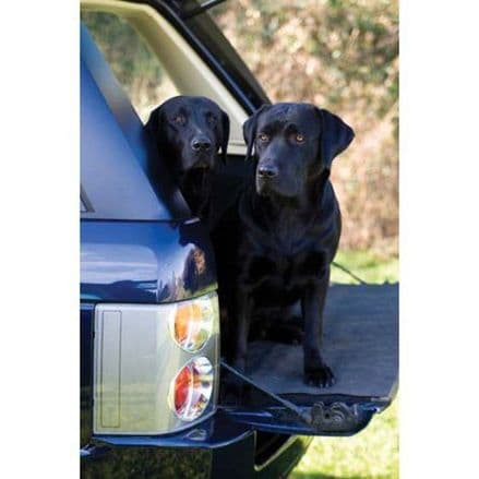 CSP Greeting Cards 'Black Labrador'