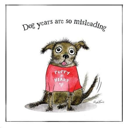 Dog Lovers Selection Cards Dog Years