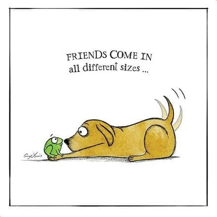 Dog Lovers Selection Cards Friends