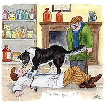 James Herriot Cards 'He Likes You...'