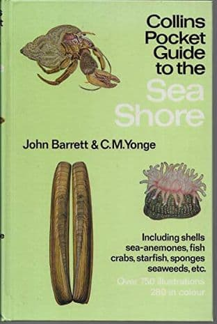 Pocket Guide to the Sea Shore