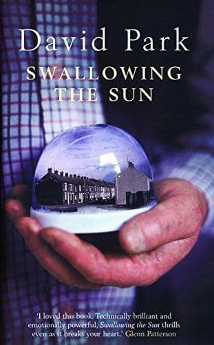 Swallowing The Sun by David park - 0747570361