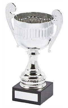 RIBBED VALUE PRESENTATION CUP PLATE ENGRAVED FREE OF CHARGE