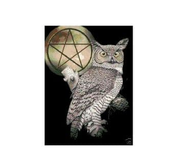 PDF Digital Download Vintage Cross Stitch Sewing Pattern Owl & Pentagram Picture Wiccan