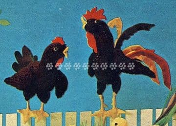PDF Digital Download Vintage Knitting Pattern Rooster & Hen Stuffed Soft Body Toy Animals