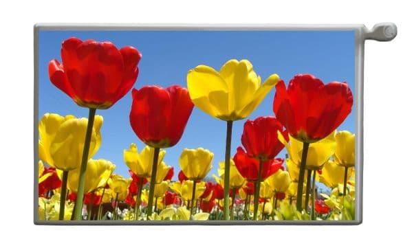 TULIPS Magnetic Radiator Cover