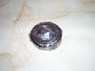 DIFFERENTIAL BEARING-(RTC3095)