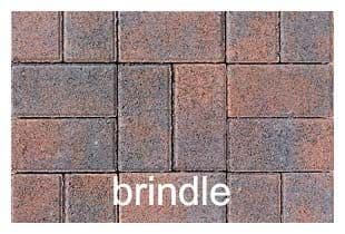 PAVIOR PEDESTA BRINDLE 200 x 100 x 50MM (PER SQ METRE)