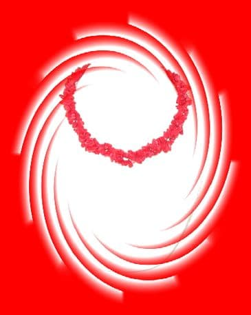Indian Necklace - Red Coral