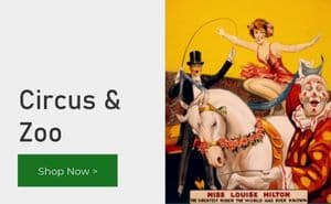 Circus and Zoo posters