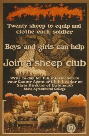 Vintage WW1 Poster Looking for Volunteers to Join a Sheep Club